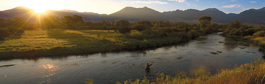 colorado women flyfishers, Fly Fishing Bait